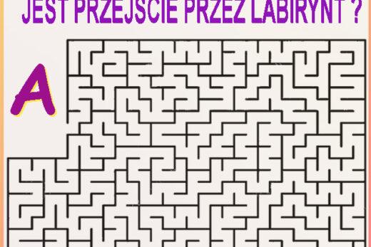 Zagadka - labirynt Czy da się przejść między punktami A i B ? Odpowiedź wpisz w komentarzu. Kliknij też udostępnij i sprawdź czy Twoi znajomi znają odpowiedź do tej zagadki :)