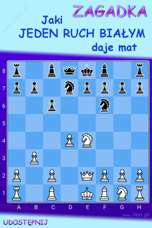 jednochodówka, zagadka szachowa, zagadka logiczna, ciekawa zagadka na logikę, jaki ruch daje mat